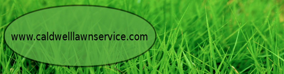 Caldwell Lawn Service